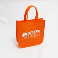 80gsm Non Woven Bag On Sale