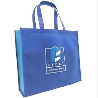 Custom Made 80gsm PP Non Woven Bag