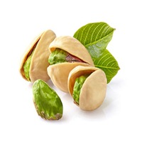 Pistachio Protein