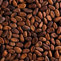 Venezuela Cocoa