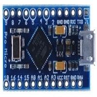 Arduino Mini Leonardo Board