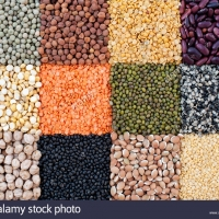Pulses And Lentils