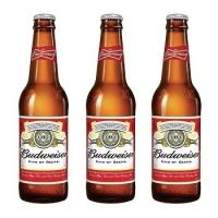 Budweiser Beer 330ml Wholesale