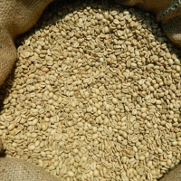 Arabica, Robusta Coffee Beans, Raw or Roasted