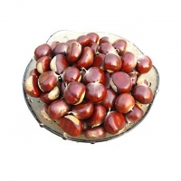 Wholesale Fresh Chestnut With Shell & shelled