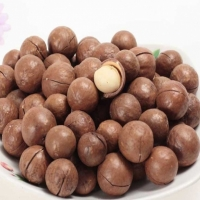 Wholesale Organic Macadamia Nuts