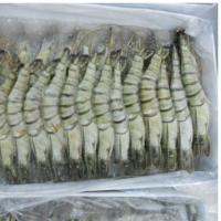 Premium Grade Black Tiger Shrimp