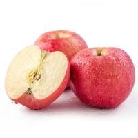 High Quality Wholesale Royal Gala Fresh Apple