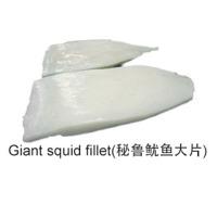Gaint Squid Fillets
