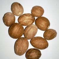 Ceylon Organic Nutmeg (Without Shell)