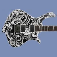 Electric Custom Guitar No Brand