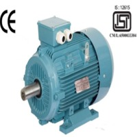 Three Phase AC Squirrel Cage Induction Motors