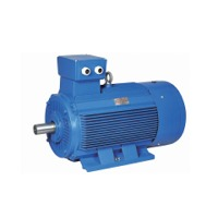 Special AC Induction Motors