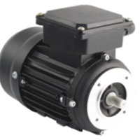 Face Monted Motors