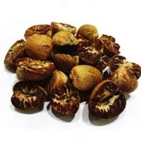 Dried Betel Nuts & Areca Nuts