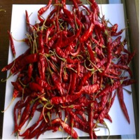 Red Dry Chilies