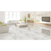 600X600 Glazed Porcelain Tiles
