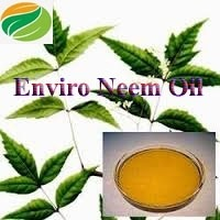 Cold Pressed Pure Neem Oil