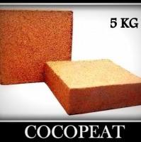 Coco Coir Pith