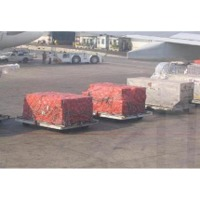 Air Cargo Bag/Sheet
