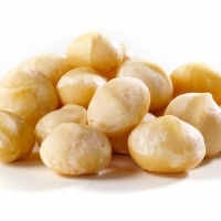 Best Quality Raw Macadamia Nuts