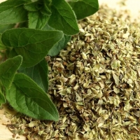 High Grade Herb Spice Oregano Dried Leaves