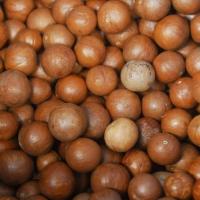 Raw Macadamia Nuts With Shell