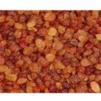 Malayer Raisins