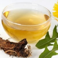 Fermented Dandelion Tea