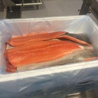 Atlantic Salmon Fillets TRIM C & D