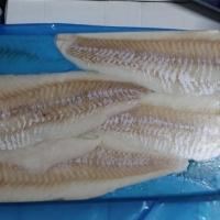 Atlantic Cod Fillets  (Gadus morhua)