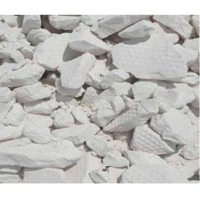 Kaolin / China Clay