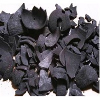Coconut Shell Based Charcoal
