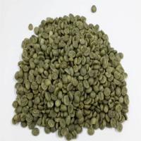 Green Arabica Coffee Bean
