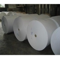 Kraft Paper & Corrugated Paper Roll