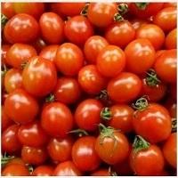 Drop Tomato