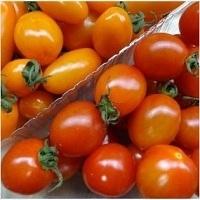 Jujube Tomato