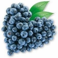 High Quality Blueberry
