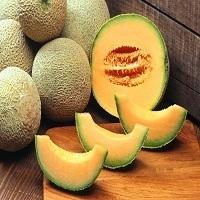 High Quality Melon