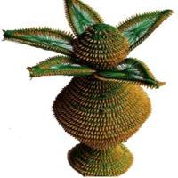 Paddy Craft Kalash