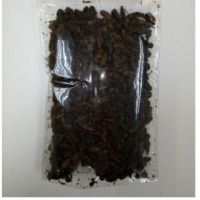 Dried Cricket