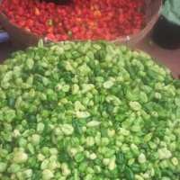 Wide Variety of Peppers
