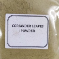 Dehydrated Coriander Leaves Powder