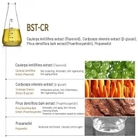 BST - CR Anti - Pollution Material