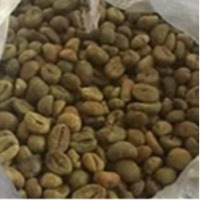 Coffee Green Beans
