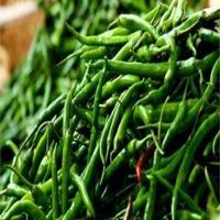 Green Chillie