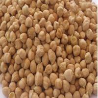 Organic Kabuli Chickpeas