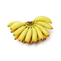 Banana Yelakki