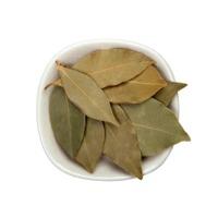 Bay Leaf Or Laurel Leaf