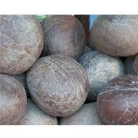 Dry Coconut Or Copra